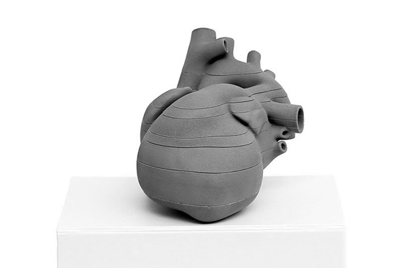 Druk 3D serca płodu wykonany dla MWU 3D Models