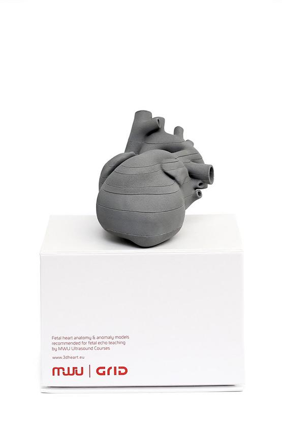 Druk 3D serca płodu wykonany dla MWU 3D Models przez Grid Studio Projektowe