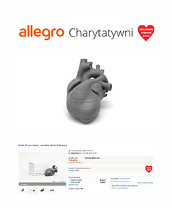 Biuro projektowe Grid aukcja charytatywna allegro model 3d serca płodu