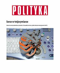 Biuro projektowe Grid artykuł Polityka model 3d serca płodu